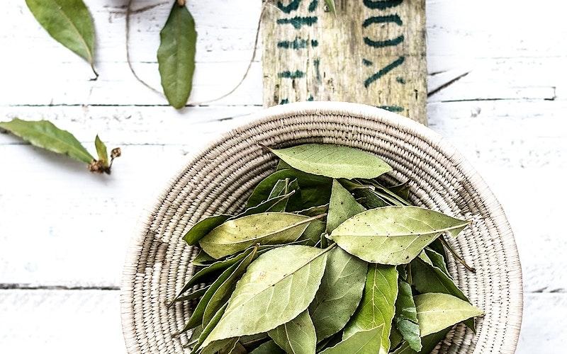 Waihi Herb Society